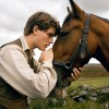 From the Spielburg film War Horse