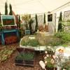 Tyme For Bed - Winning show garden 2016